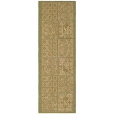 Short Light Green & Natural Outdoor Area Rug Rug Size: Rectangle 27 x 5