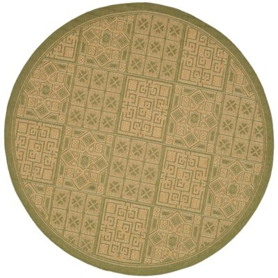 Short Light Green & Natural Outdoor Area Rug Rug Size: Round 67
