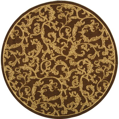 Short Brown/Natural Outdoor/Indoor Area Rug Rug Size: Round 67