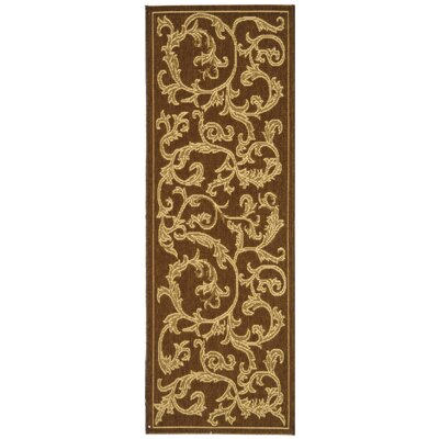 Short Brown/Natural Outdoor/Indoor Area Rug Rug Size: Runner 23 x 8