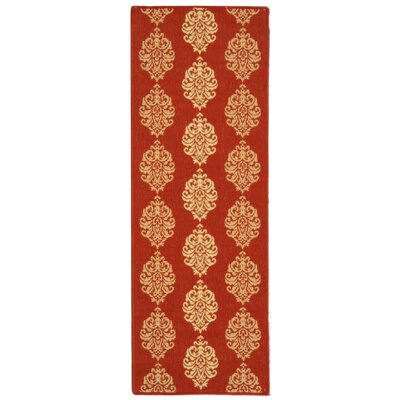 Short Red/Natural Outdoor Rug Rug Size: Runner 23 x 14