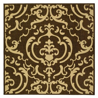 Short Chocolate/Natural Outdoor Rug Rug Size: Square 67