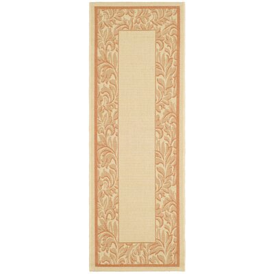 Short Terracotta/Natural Outdoor Rug Rug Size: Rectangle 27 x 5