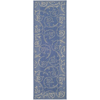 Short Blue/Natural Outdoor Area Rug Rug Size: Runner 23 x 14
