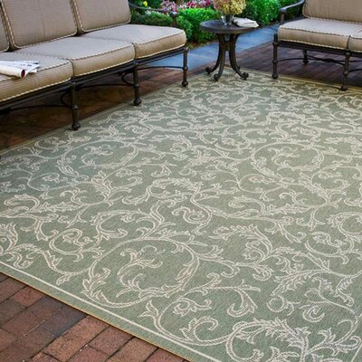 Short Indoor/Outdoor Area Rug in Olive/Natural Rug Size: Rectangle 53 x 77