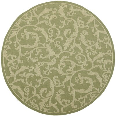 Short Indoor/Outdoor Area Rug in Olive/Natural Rug Size: Round 67