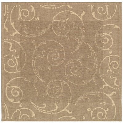 Short Brown & Natural Outdoor Area Rug Rug Size: Square 710