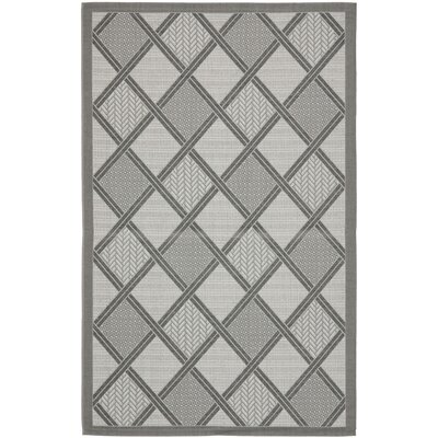 Short Light Grey / Anthracite Indoor/Outdoor Woven Rug Rug Size: 67 x 96