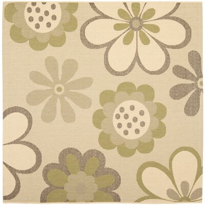 Short Natural Brown/Olive Outdoor Rug Rug Size: Square 67