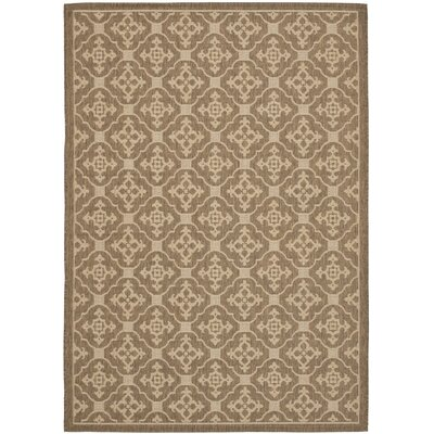 Short Brown / Creme Outdoor Area Rug Rug Size: Rectangle 67 x 96