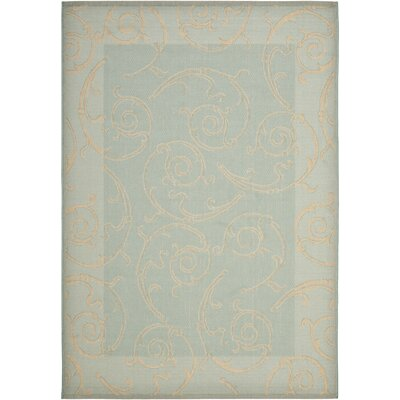 Short Aqua / Cream Indoor/Outdoor Rug Rug Size: 53 x 77