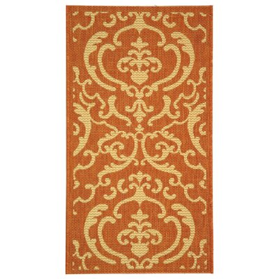 Short Terracotta / Natural Outdoor Rug Rug Size: Rectangle 4 x 57