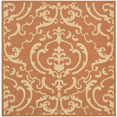 Short Terracotta / Natural Outdoor Rug Rug Size: Square 710