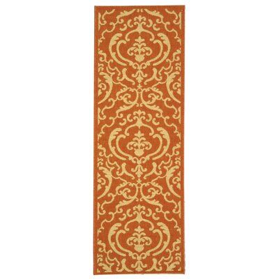 Short Terracotta / Natural Outdoor Rug Rug Size: Rectangle 27 x 5