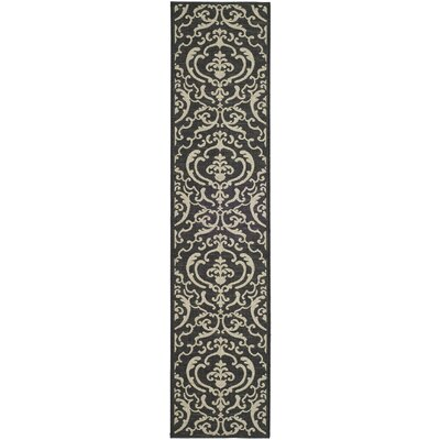 Short Black/Sand Outdoor Rug Rug Size: Runner 24 x 67