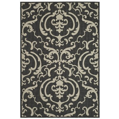 Short Black/Sand Outdoor Rug Rug Size: Rectangle 92 x 126