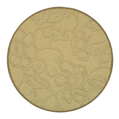 Short All Over Dark Tan Outdoor Rug Rug Size: Round 67