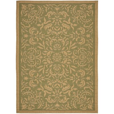 Short Light Green/Tan Outdoor Rug Rug Size: 67 x 96