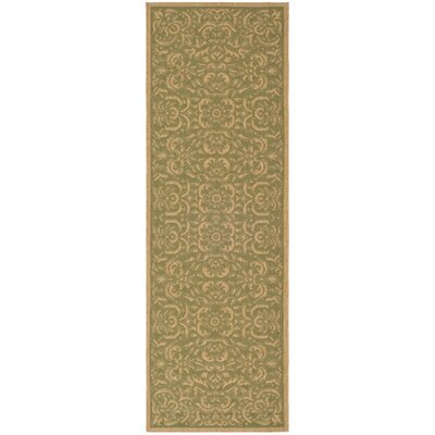 Short Light Green/Tan Outdoor Rug Rug Size: Runner 22 x 911