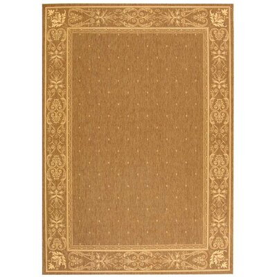 Short Brown Outdoor Area Rug Rug Size: Rectangle 53 x 77