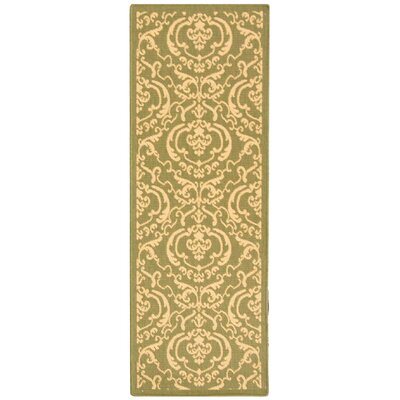 Short Olive/Natural Outdoor Rug Rug Size: Runner 24 x 67
