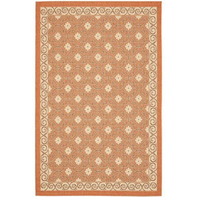 Short Terracotta / Cream Indoor/Outdoor Rug Rug Size: 53 x 77