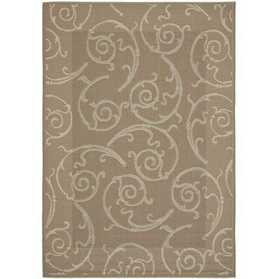 Short Dark Beige / Beige Indoor/Outdoor Woven Rug Rug Size: Rectangle 8 x 112