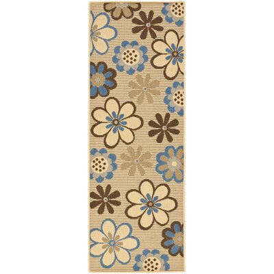 Short Natural Brown/Blue Outdoor Rug Rug Size: Rectangle 27 x 5