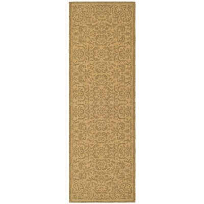 Short Light Natural Outdoor Rug Rug Size: Runner 22 x 911