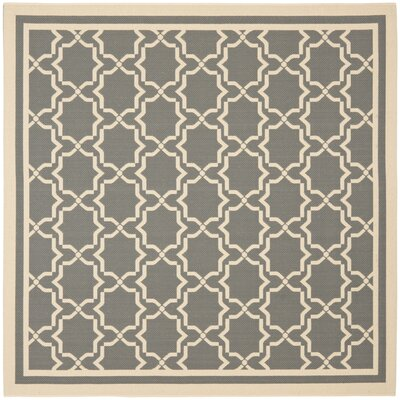 Short Anthracite/Beige Outdoor Area Rug Rug Size: Square 53