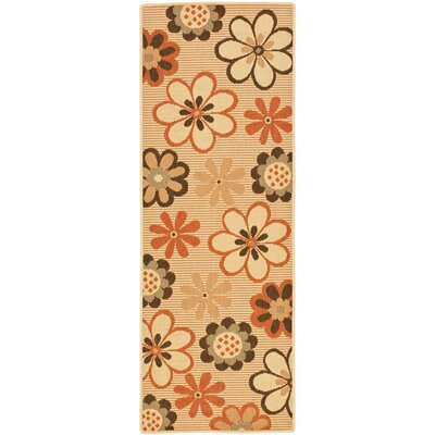 Short Natural Brown/Terracotta Rug Rug Size: Runner 24 x 67