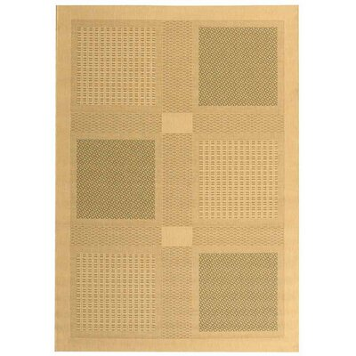 Short Natural / Olive Outdoor Transitional Area Rug Rug Size: Rectangle 53 x 77