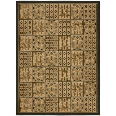 Short Light Brown/Black Outdoor Rug Rug Size: 53 x 77