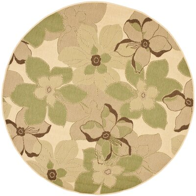 Short Natural Brown / Olive Rug Rug Size: Round 67