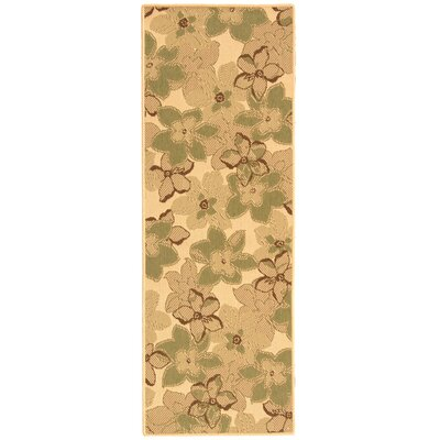 Short Natural Brown / Olive Rug Rug Size: Runner 24 x 67