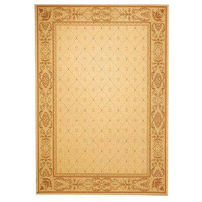Short Natural / Terra Outdoor Area Rug Rug Size: Rectangle 53 x 77