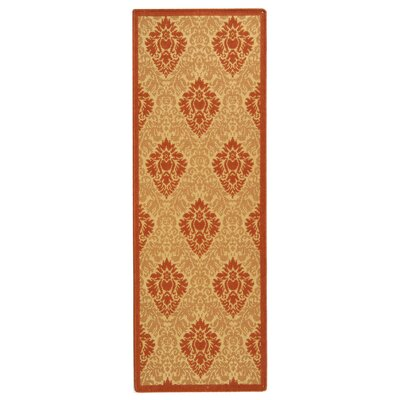 Short Natural/Terracottal Outdoor Area Rug Rug Size: Runner 24 x 67