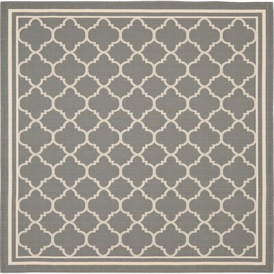 Short Anthracite & Beige Indoor/Outdoor Area Rug Rug Size: Square 4