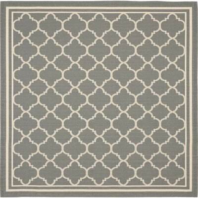 Short Anthracite & Beige Indoor/Outdoor Area Rug Rug Size: Square 67