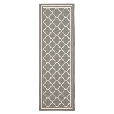 Short Anthracite & Beige Indoor/Outdoor Area Rug Rug Size: Runner 24 x 67