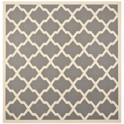 Short Anthracite & Beige Outdoor Area Rug Rug Size: Square 4