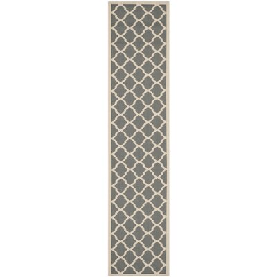 Short Anthracite & Beige Outdoor Area Rug Rug Size: Runner 23 x 67