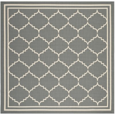 Short Gray/Ivory Indoor/Outdoor Area Rug Rug Size: Square 67