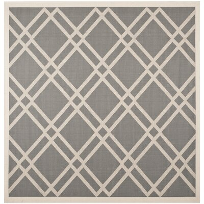 Short Gray/Ivory Indoor/Outdoor Area Rug Rug Size: Square 710