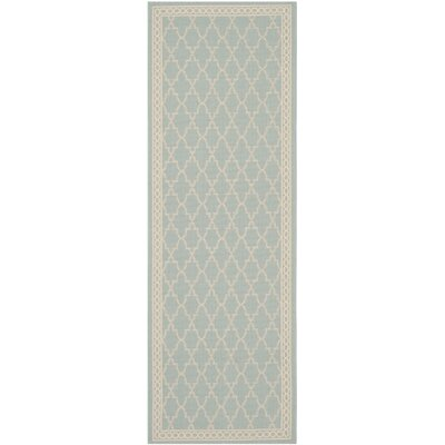 Short Aqua/Beige Outdoor Rug Rug Size: Runner 23 x 67