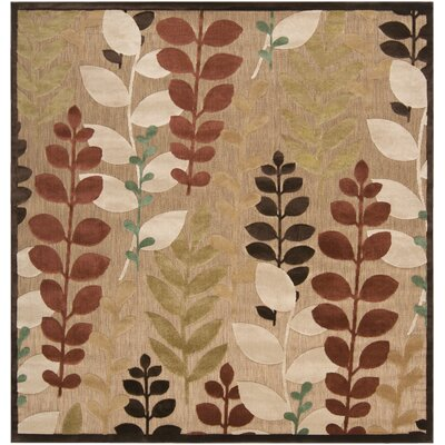 Wardell Floral Indoor/Outdoor Area Rug Rug Size: Square 76