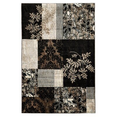 Danica Black Area Rug Rug Size: Rectangle 5 x 7