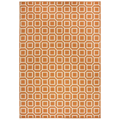 Julian Orange Indoor/Outdoor Area Rug Rug Size: 53 x 77