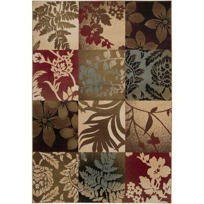 Acres Camel/Multi Rug Rug Size: Rectangle 4 x 55
