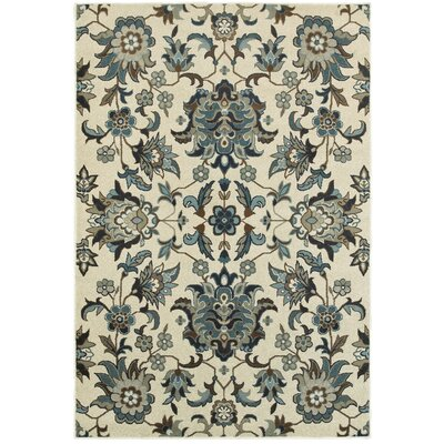 Boykins Flowers Ivory/Blue Area Rug Rug Size: Rectangle 53 x 76